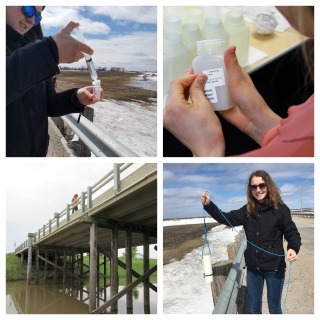 A photo collage of students doing water sampling work