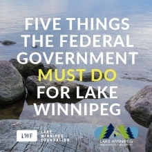 """Graphic saying """"Five Things the Federal Government Must Do for Lake Winnipeg"""""""