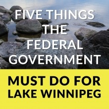 Text saying five things the federal government must do for lake winnipeg over rocks along the shore of lake winnipeg.