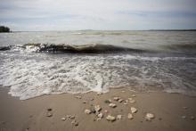 Managing our Shorelines