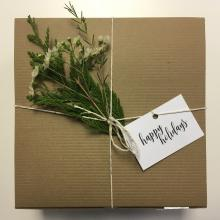 Gift-wrapped holiday present