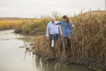 Citizens sampling water in a creek