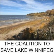 A lake shoreline and the words Coalition to Save Lake Winnipeg